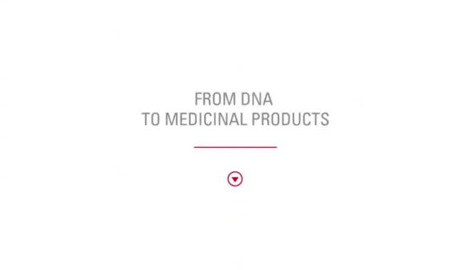 How are recombinant medicinal products produced by cell culture?